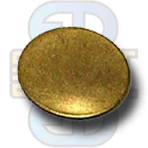 Burst disk (3K) CO2