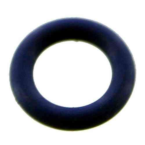 O-ring for Ion Feedneck