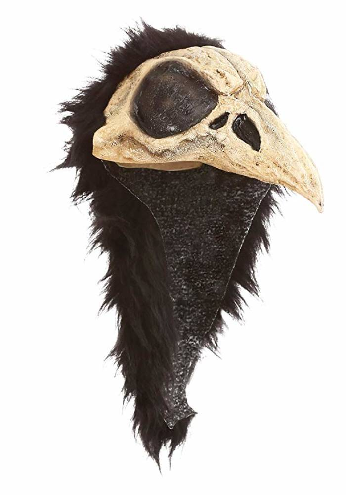 Crow Bird Helmet